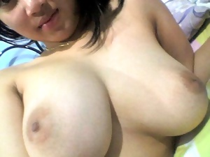 Malay Asian Tits Collection