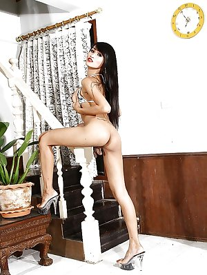 Shemales and ladyboys 2